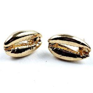 Cowrie Shell Gold Tone Stud Earrings